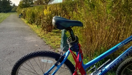 My Blue Bike